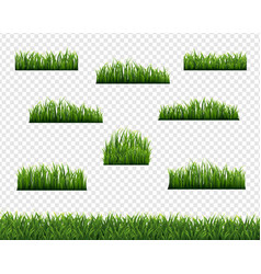 Green grass borders and transparent background vector