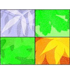 Leaf seasons vector