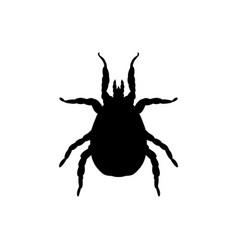 mite parasite black silhouette animal vector image