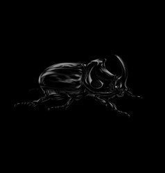 portrait of a rhinoceros beetle on a black vector image