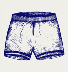 Swimming trunks vector