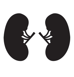 Kidney Icon Black vector image