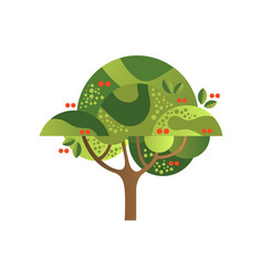 green tree with cherries garden plant with red vector image