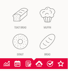 Muffin donut and toast bread icons vector