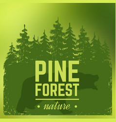 pine forest silhouette with wild bear vector image