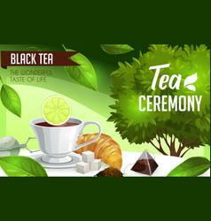 Tea ceremony cup and bush brew and sugar vector