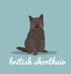 British shorthair with red eyes sitting on sky vector
