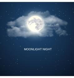 Night sky background vector image