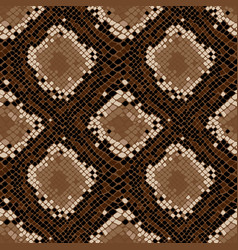 snake skin seamless pattern texture background vector image