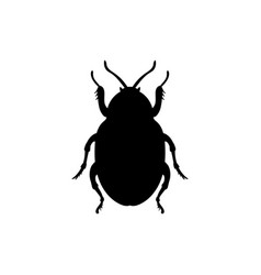 Beetle insect black silhouette animal vector