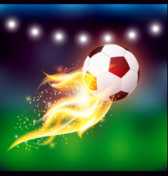 Soccer Ball With Fire vector image