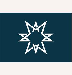 dark blue and white star shape vector image