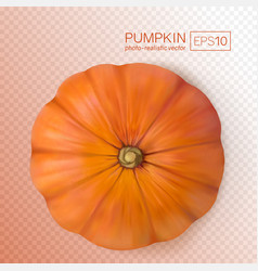 fresh pumpkins on transparent background photo vector image