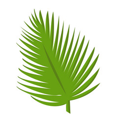 green palm leaf icon cartoon style vector image