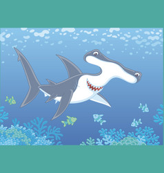 hammer-headed shark over a reef vector image