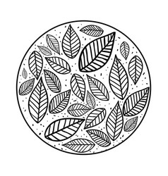Leaves nature draw vector