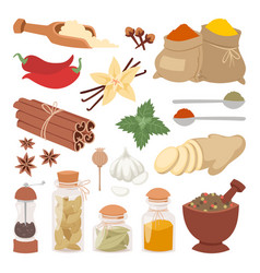 Seasoning food herbs natural ingredient vector
