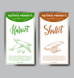 set of stickers with hand drawn vegetarian vector image