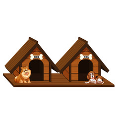 two wooden doghouses with dogs vector image vector image