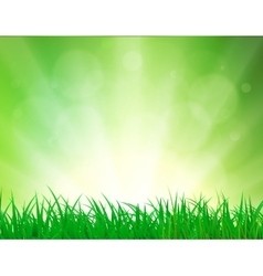Beautiful Spring background vector image vector image