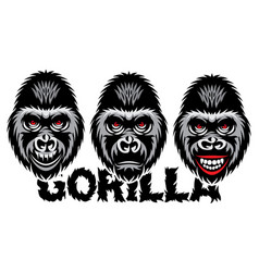 a set different gorilla color vector image
