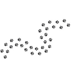 cat footprints cats or dogs travel footprints vector image