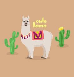 cute llama in desert with cactus vector image