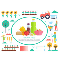 organic food poster and people vector image
