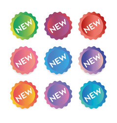 the new label set of banners vector image