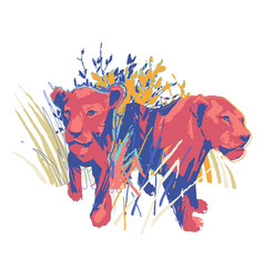two graphic female lions standing among grass vector image