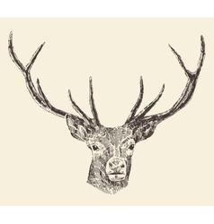 Deer head vintage hand drawn vector