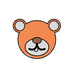 drawing bear face animal vector image vector image