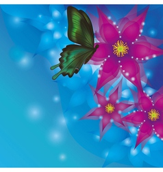 Background with exotic flowers and butterfly vector image