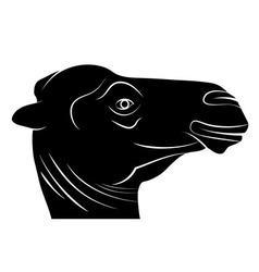 Camel Head Silhouette vector image
