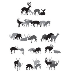 groups of isolated deers silhouettes vector image
