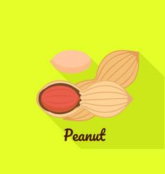 peanut icon flat style vector image