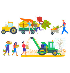 People harvesting characters on field harvest vector