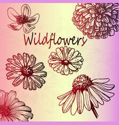 Red gradient sketch wildflowers set vector