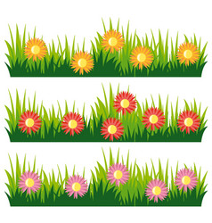 seamless nature design with flowers vector image