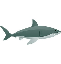 Shark cartoon vector