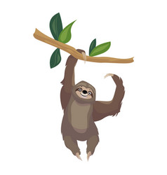 Sloth on tree branch icon cartoon style vector