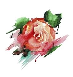 Rose hand-drawn watercolor vector image vector image