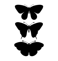 set of black silhouettes of butterflies vector image