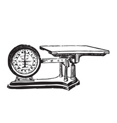 engraved of a weighing scale vector image vector image