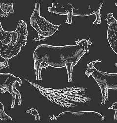 Farm animal background vector