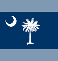 flag usa state south carolina vector image