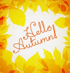 Hello autumn logo Fall concept vector