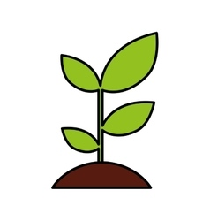 plant ecology isolated icon vector image