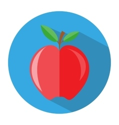 red apple with branch and leaves icon vector image