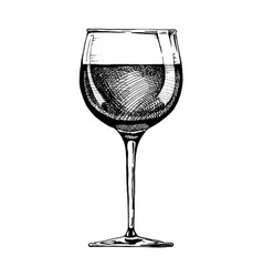 red wine glass vector image